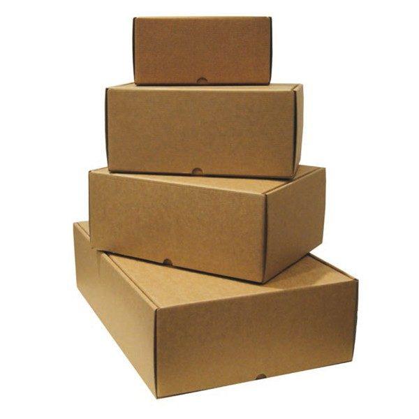 Cajas automontables para envío 165x118x46